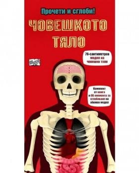 Прочети и сглоби!: Човешкото тяло